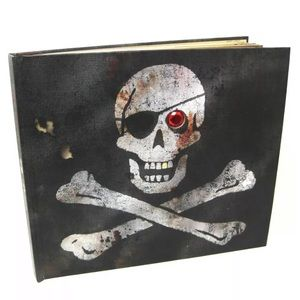 Pirates by John Matthews Hardcover Picture Book
